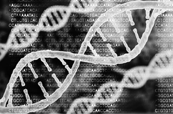 Strands of DNA and it's code