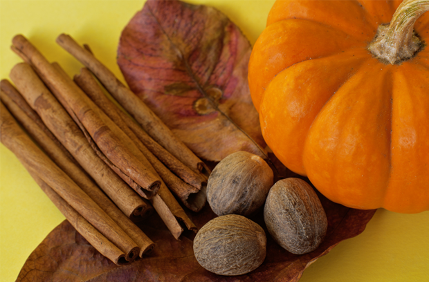 mini_pumpkin_cinnamon_sticks_brown_fall_leaves_nutmeg_on_yellow_background