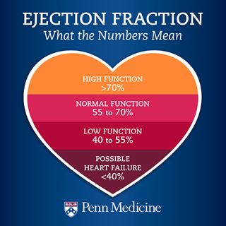 Ejection Fraction What The Numbers Mean