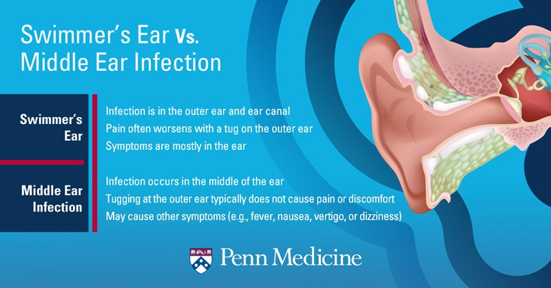 infographic_showing_inner_ear_canal_describes_difference_between_swimmers_ear_and_a_middle_ear_infection