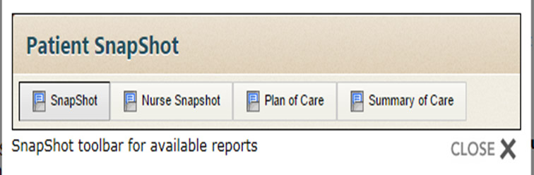 Screenshot of Penn PhysicianLink's SnapShot screen