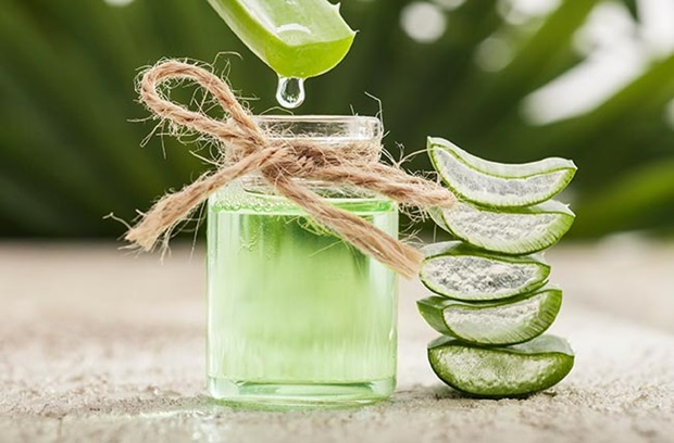 broken_pieces_of_aloe_stacked_on_top_of_each_other_next_to_mason_jar_of_aloe_gel_with_piece_dripping_into_it