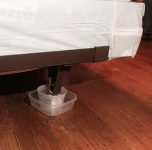 Plastic container to deter bed bugs