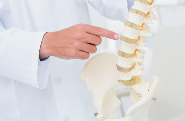 3 Myths About Your Curved Spine – Penn Medicine