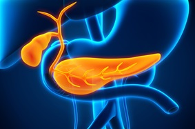 a blue and yellow illustration of a pancreas