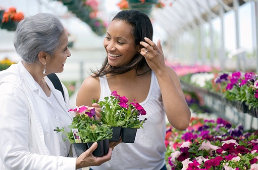 Mother and adult daughter choosing flowers in a greenhouse