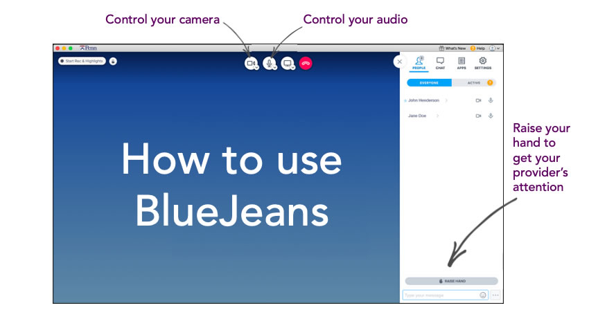 "Screenshot of the BlueJeans platform that instructs patients to get their providers' attention by using the ""RAISE HAND"" button at the bottom right of the screen."