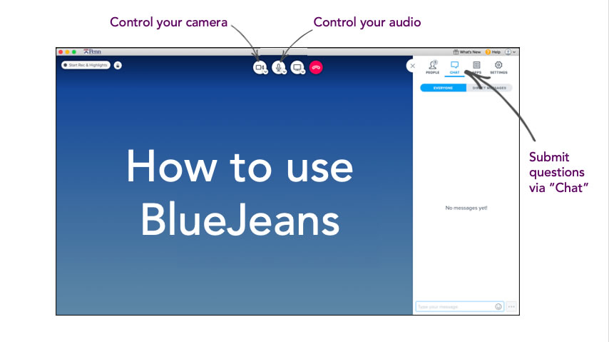 Screenshot of the BlueJeans platform that instructs patients to use the chat function at the top right of the screen during group sessions